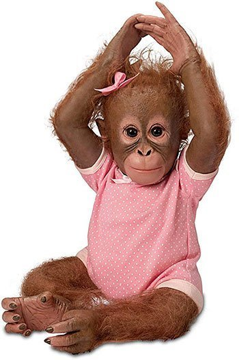 Reborn Animal Dolls Toddler Baby Monkey Doll