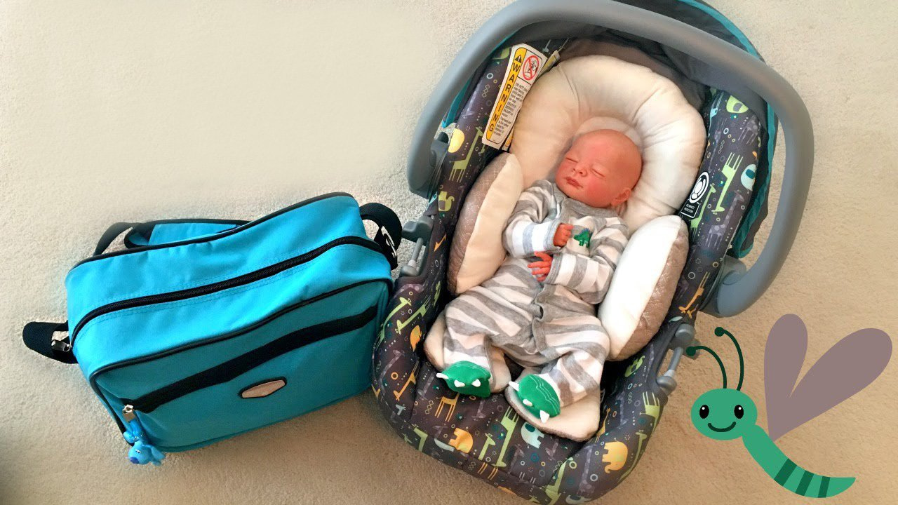 How To Travel With Reborn Dolls